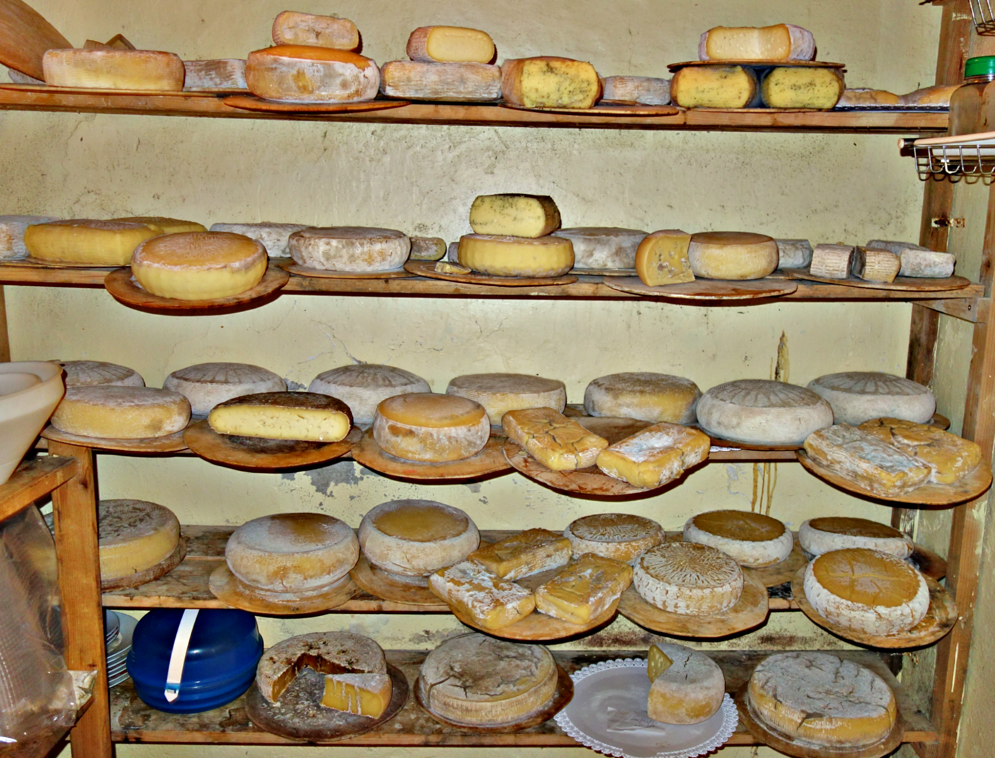 Cheese Tasting On a Small Farm in Tuscany