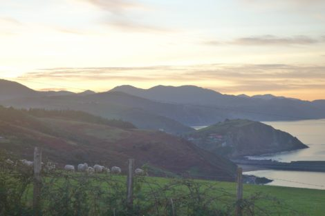 Views before sunset on the Camino in Basque Country Spain